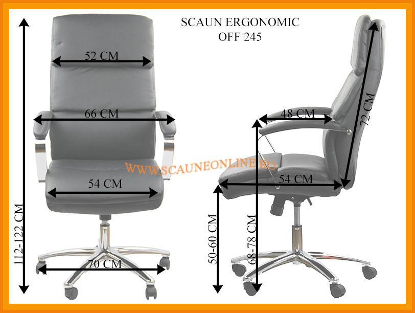 Dimensiuni Scaune ergonomice de birou OFF 245