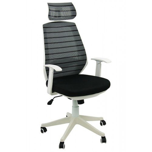 Scaun Ergonomic Imagine